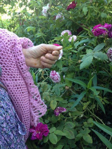 Le mani di Gabriella