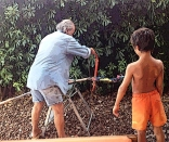 Il taglio del nonno